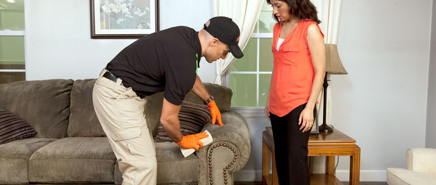 Randolph, NJ carpet upholstery cleaning