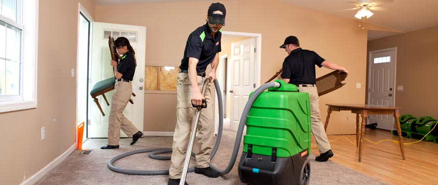 Randolph, NJ cleaning services